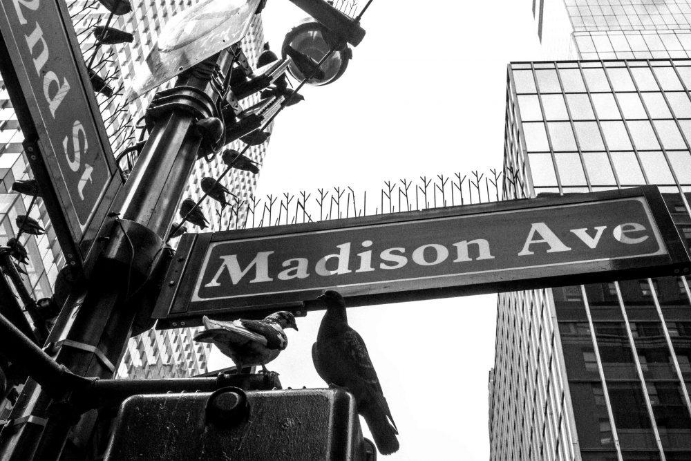 Pedro Díaz realizador filmmaker fotografía Madison Ave New York